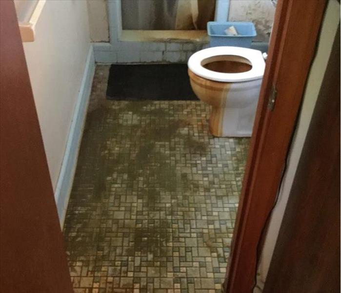 Sewage/water damage in local home before mitigation
